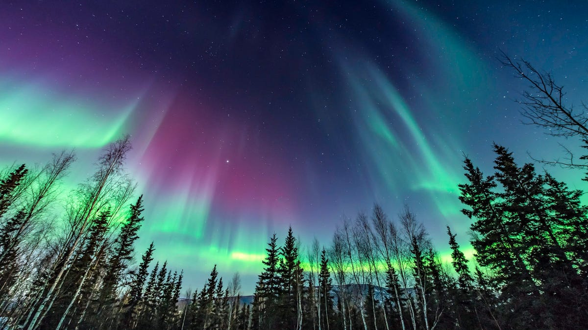 March 16-23 : Northern Lights in Indian Relaxed Style
